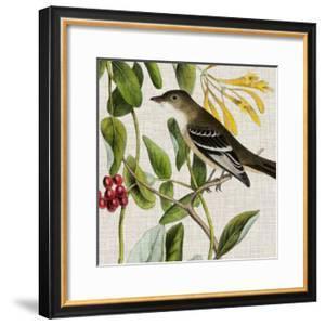 Avian Crop II by John James Audubon