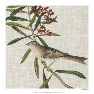 Avian Crop VII by John James Audubon