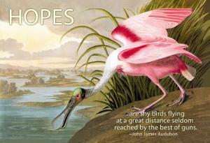 Hopes Are Shy Birds by John James Audubon