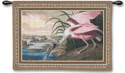 Spoonbill Pelican