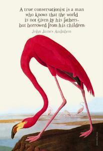True Conservationist by John James Audubon