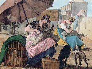 Dog Clippers on the Pont-Neuf, 1820 (Colour Litho) by John James Chalon