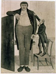 Mr O'Brien, the Irish Giant, the Tallest Man in the known World Being Near Nine Feet High, 1803 by John Kay