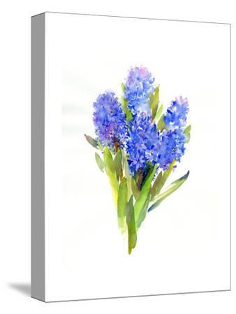Blue Hyacinth, 2014