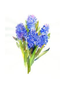 Blue Hyacinth, 2014 by John Keeling