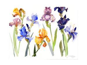 Iris, 2014 by John Keeling