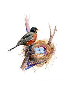 Robin with Nest;2016 by John Keeling