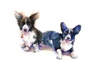 Two Corgis, 2015 by John Keeling