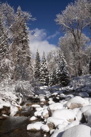 Usa, Colorado, Winter Landscape