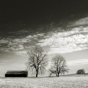 Newnan by John Kuss