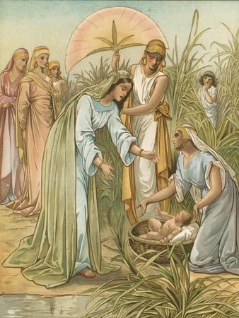 Moses in the Bullrushes