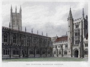 The Cloister, Magdalen College, Oxford University, 19th Century by John Le Keux