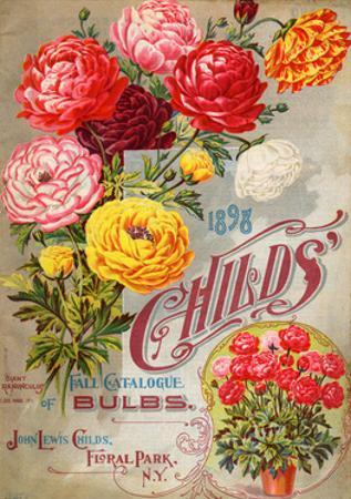 John Lewis Child's 1898 Fall Catalogue: Bulbs