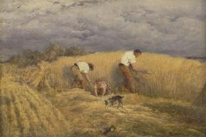 A Finished Study for 'Reaping', 1858 by John Linnell