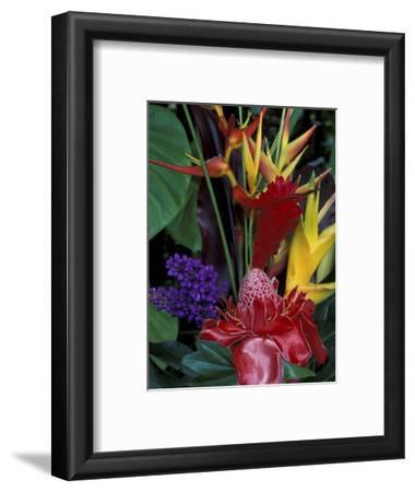 Colorful Tropical Flowers, Hawaii, USA
