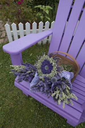 Dried Lavender on Purple Chair at Lavender Festival, Sequim, Washington, USA