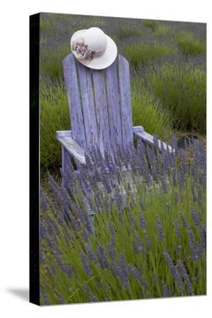 Garden, Adirondack Chair and Straw Hat, Lavender Festival, Sequim, Washington, USA