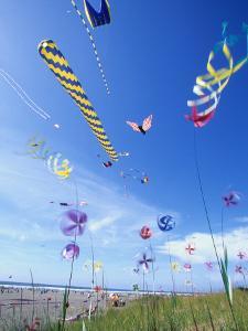 Kites on the Beach, Long Beach, Washington, USA by John & Lisa Merrill
