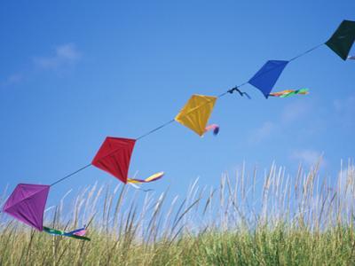 Kites on the Beach, Long Beach, Washington, USA