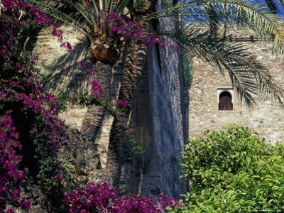 Plams, Flowers and Ramparts of Alcazaba, Malaga, Spain