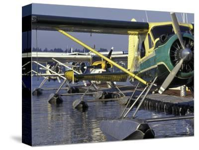 Seaplanes Docked on Lake Washington, Seattle, Washington, USA
