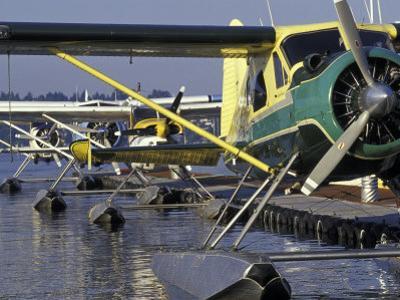 Seaplanes Docked on Lake Washington, Seattle, Washington, USA