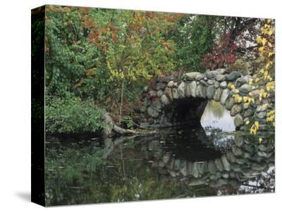 Trees by Pond and Stone Bridge at Hecksher Museum, Long Island, New York, USA