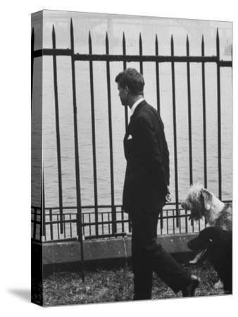 Democratic Candidate For New York Senator, Robert F. Kennedy with Dogs at Gracie Mansion by John Loengard