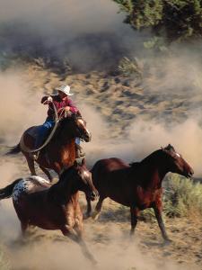 Cowboy Roping Horses by John Luke