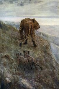 On the Alert - Lioness and Cubs, C1878-1910 by John Macallan Swan