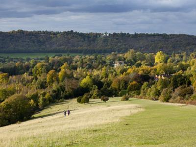 Autumn View North Along the Burford Spur of Box Hill, Surrey Hills, North Downs, Dorking, Surrey, E