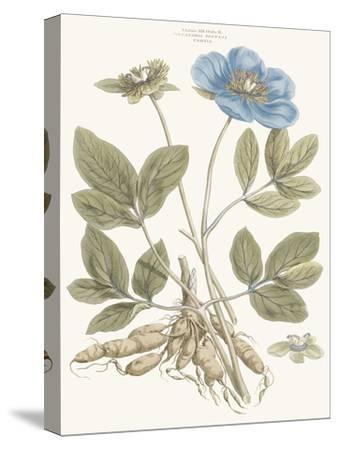Bashful Blue Florals I