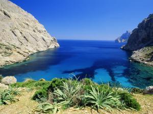 Bay Near Puerto Pollensa, Mallorca (Majorca), Balearic Islands, Spain, Europe by John Miller