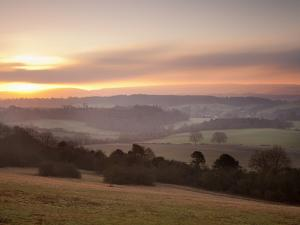 Newlands Corner View at Dawn, Near Guilford, Surrey Hills, North Downs, Surrey, England, United Kin by John Miller