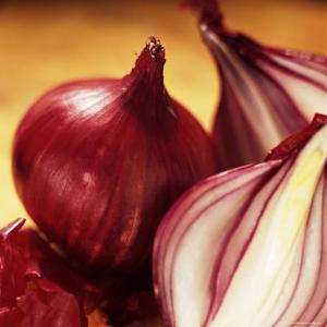Studio Shot of Red Onions by John Miller