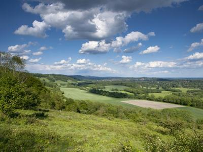 Summer View East Along the Surrey Hills, from White Down, Dorking in the Distance, North Downs, Sur
