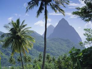 The Pitons, St. Lucia, Caribbean, West Indies by John Miller
