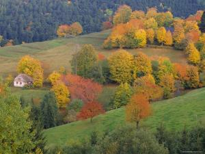 The Vosges, Alsace-Lorraine, France, Europe by John Miller