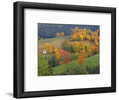 The Vosges, Alsace-Lorraine, France, Europe