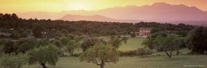 View Towards Sierra De Tramuntana Mountains, Near Muro, Majorca, Balearic Islands, Spain by John Miller