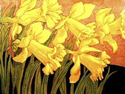 Big Daffodils by John Newcomb