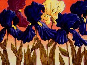 Big Iris II by John Newcomb