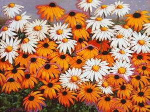 Daisies by John Newcomb