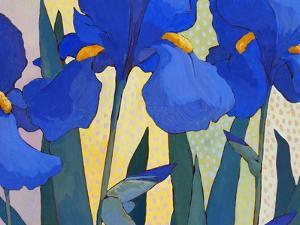 Faceted Irises by John Newcomb