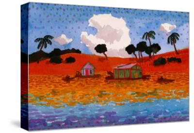 Houseboats on the Amazon River