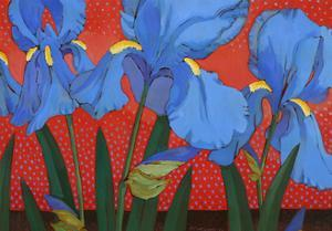 Irises and Red by John Newcomb