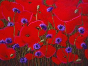 Poppies and Batchelor Buttons by John Newcomb