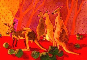 Roo Herd by John Newcomb