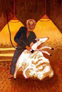 Sheep Shearing by John Newcomb