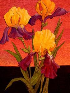Two Toned Irises by John Newcomb
